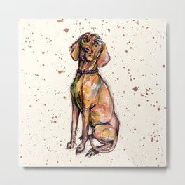 Hungarian Vizsla Dog Metal Print