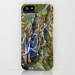 Brandywine Springs iPhone Case