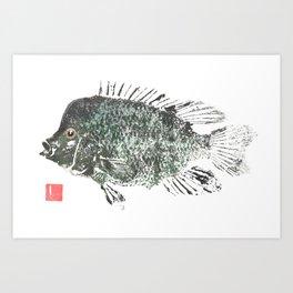 Rio Grande Cichlid natural Art Print