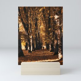 linden Mini Art Print