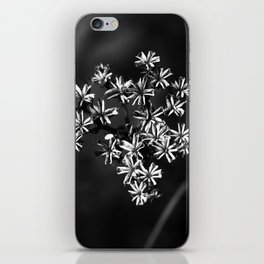 the dried flower iPhone Skin