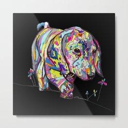 Colorful Dappled Doxie Print on Turquoiserint on Black Metal Print
