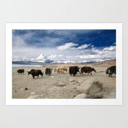 Timeless landscape in Pamir, Tajikistan Art Print