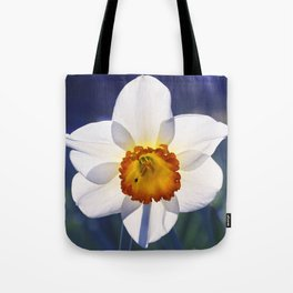 the genus of narcissus Tote Bag