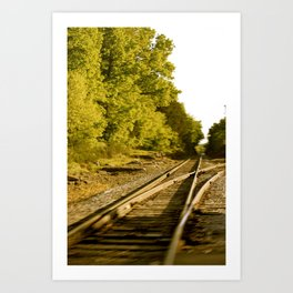 The paths we take.  Art Print
