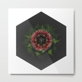 Blooming Flower of Celestial Pollination - Geometry Pattern Metal Print