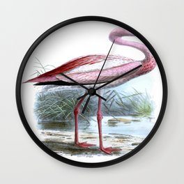 Puna Flamingo Wall Clock
