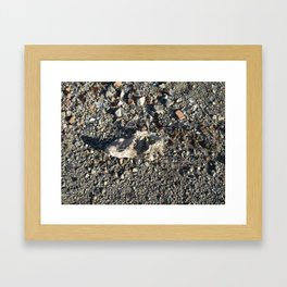 Forgotten Shoe Framed Art Print