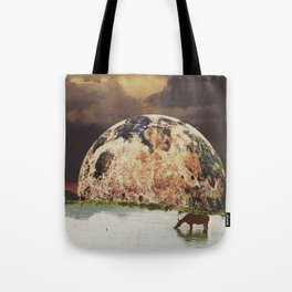 Secret lagoon  Tote Bag
