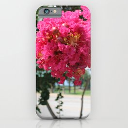 Crepe Myrtle I iPhone Case