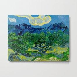 Olive Trees by Vincent Van Gogh Oil Painting Metal Print