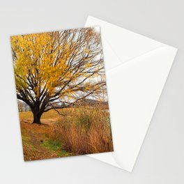 Payson 003 Stationery Cards
