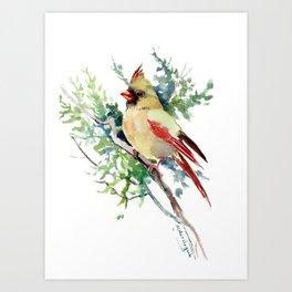 Cardinal Bird Artwork, female cardinal bird Art Print