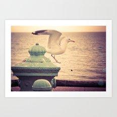 Brighton Morning Art Print