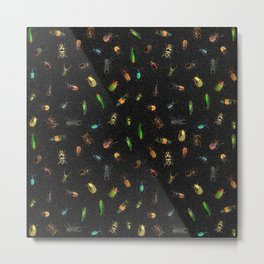 Colorful Different Real Bugs Pattern Metal Print