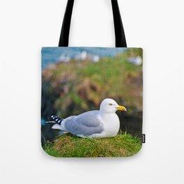 Herring Gull at Rest Tote Bag
