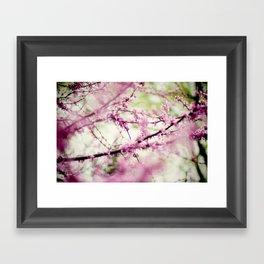 Into a Dream Framed Art Print