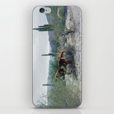Mexican Horse Hide iPhone & iPod Skin