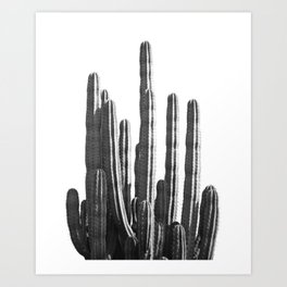 Black and White Cactus Art Print