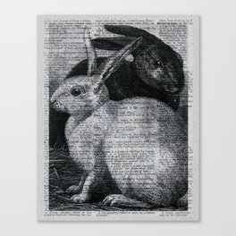 Dictionary Bunnies by Kathy Morton Stanion Canvas Print