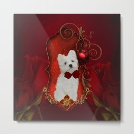 Cute little maltese puppy Metal Print