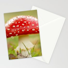 White dotted red hood Stationery Cards