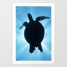 Tartaruga Art Print