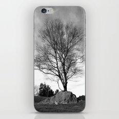 Adaptation iPhone & iPod Skin