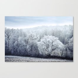 Foggy Winter Landscape with snow covered Trees Canvas Print