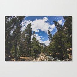 Fisheye Yosemite National Park, California Canvas Print