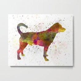 Danish swedish farmdog 01 in watercolor Metal Print