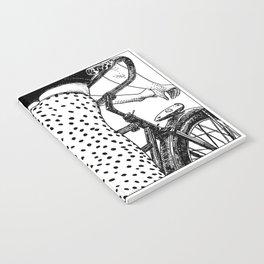 asc 409 - Le velociraptor (The velociraptor) Notebook