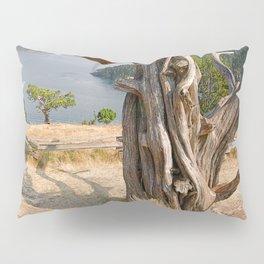 OLD JUNIPER AT BURROWS PASS ANACORTES Pillow Sham