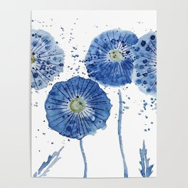 four blue dandelions watercolor Poster