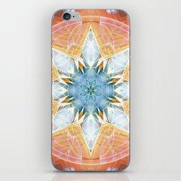 Flower of Life Mandalas 3 iPhone Skin