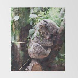Cute Koala relaxing in a Tree Throw Blanket
