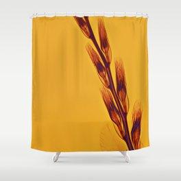 X-rayed Gladiola Shower Curtain