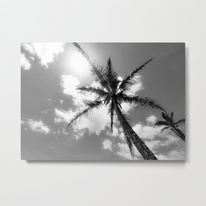 Tropical Palm Trees Black and White Metal Print