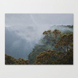 Zero Visibility Canvas Print