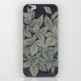 Roses plant iPhone Skin