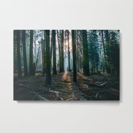 The woods are deep Metal Print
