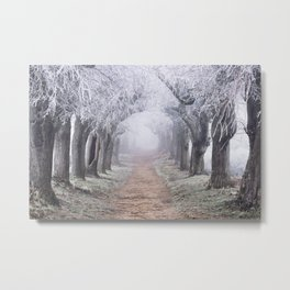 To Where The Traces Of My Dreams Remained Metal Print