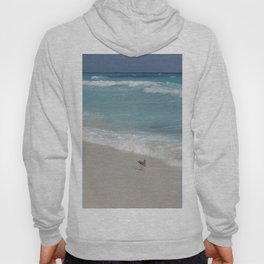 Carribean sea 8 Hoody
