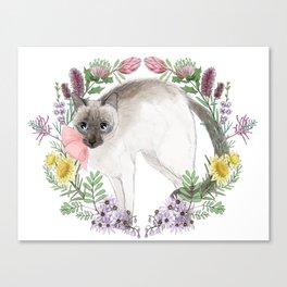 Pixie the Chocolate Siamese Cat Canvas Print