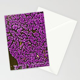 Clumps of Methicillin-Resistant Staphylococcus Aureus Bacteria Stationery Cards