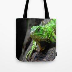 The Lizard King of Aruba Tote Bag