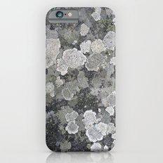 Buzy, Buzy Lichen Slim Case iPhone 6s