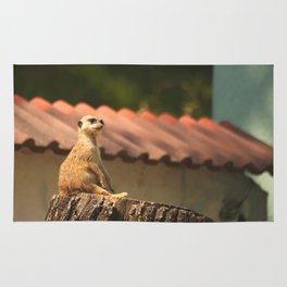 Meerkat Funny Observer #decor #society6 Rug