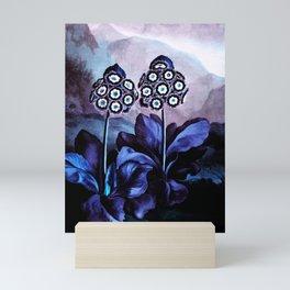 Blue Auriculas : Temple of Flora Mini Art Print