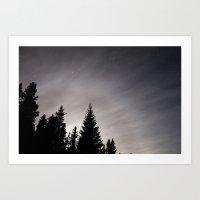 Trees by Night Art Print